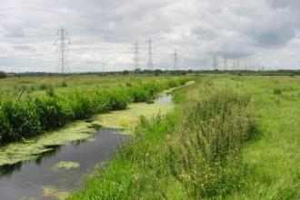 Gowy Meadows Nature Reserve