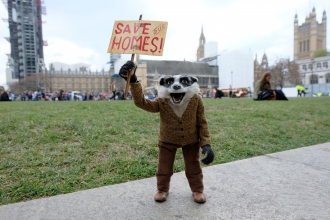 Badger outside Parliament