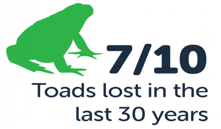 7/10 toads lost in the last 30 years