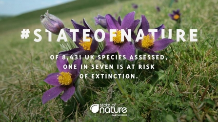 state of nature graphic
